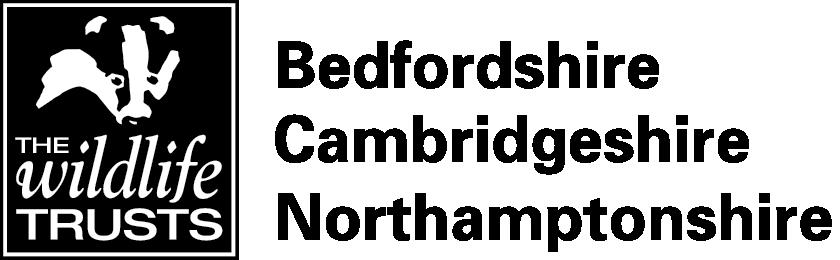 Wildlife Trust BCN logo