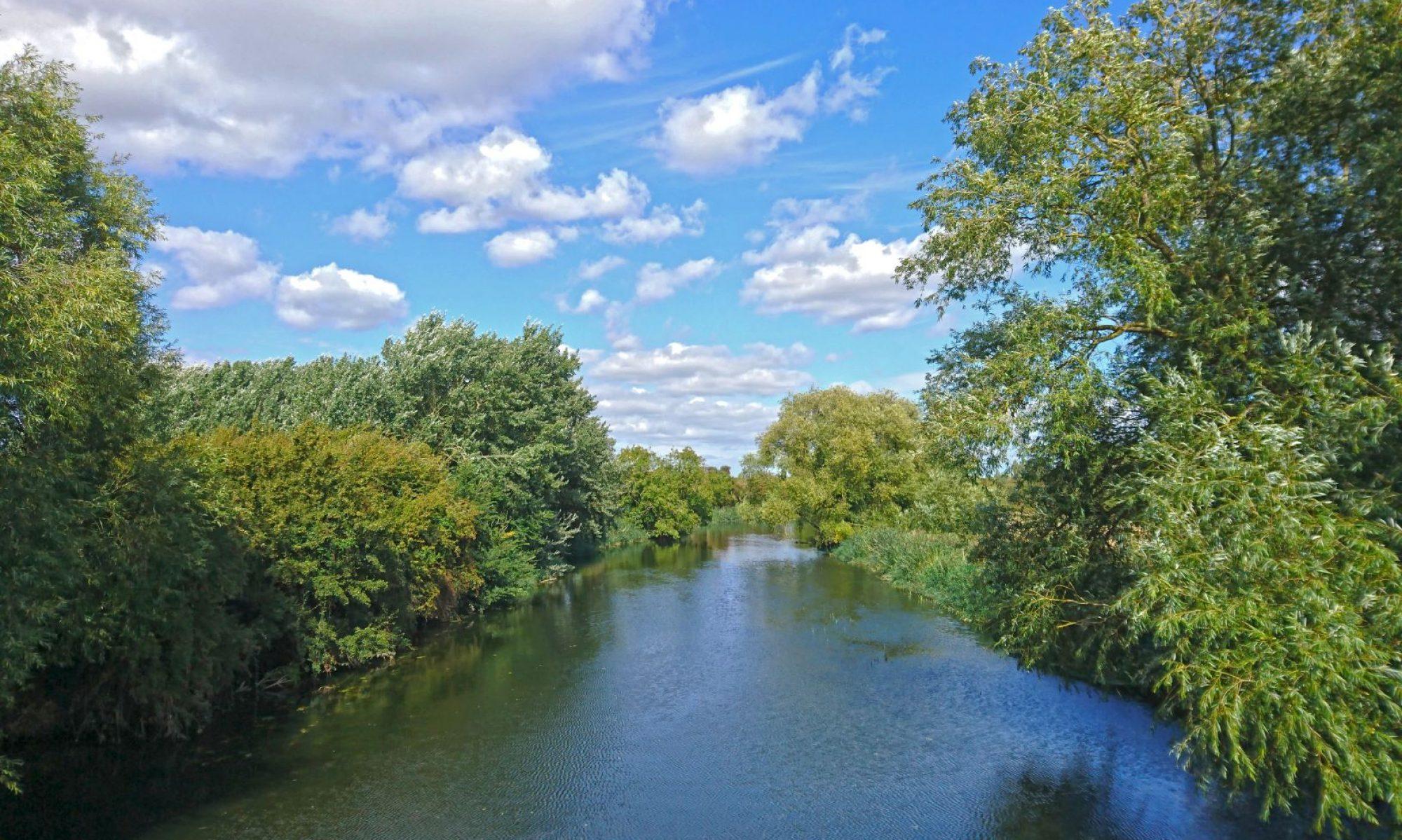 Cambridge Nature Network